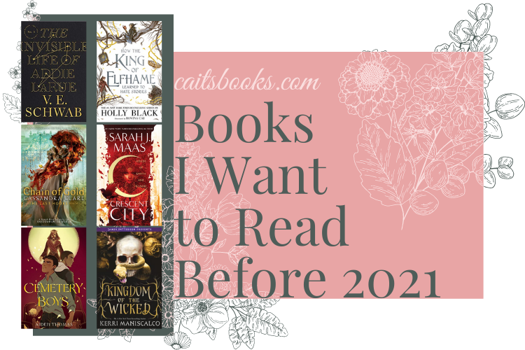 Books I Want to Read Before 2021